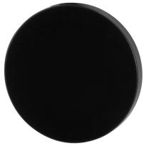 Blinde rozet GPF6900VZ 53x6mm zwart egaal