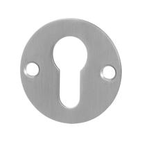 Cilinderrozet GPF0902.06 50x2mm RVS geborsteld