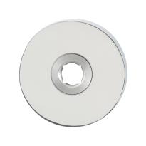 Rozet GPF1100.45 50x6mm RVS gepolijst