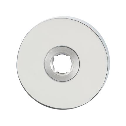 Rozet GPF1100.40 50x8mm RVS gepolijst